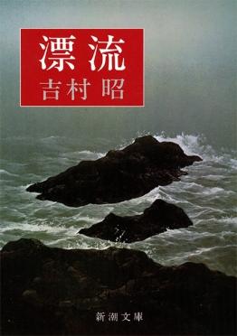 感動する・泣ける小説『漂流』